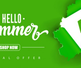 Summer sale green background vector