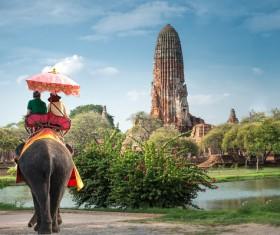 Tourists riding elephants Stock Photo