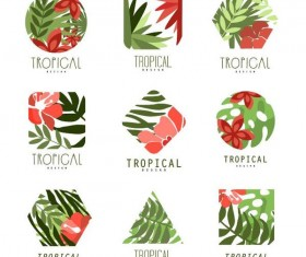 Tropical plant logos vector