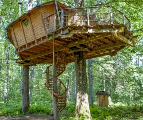 Unique tree house Stock Photo 01