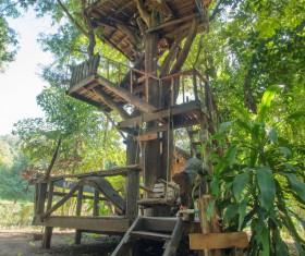 Unique tree house Stock Photo 04
