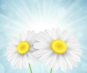 White flower with blurs background vector