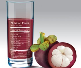 mangosteen juice nutrition vector
