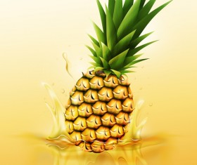pinapple juice splash vector