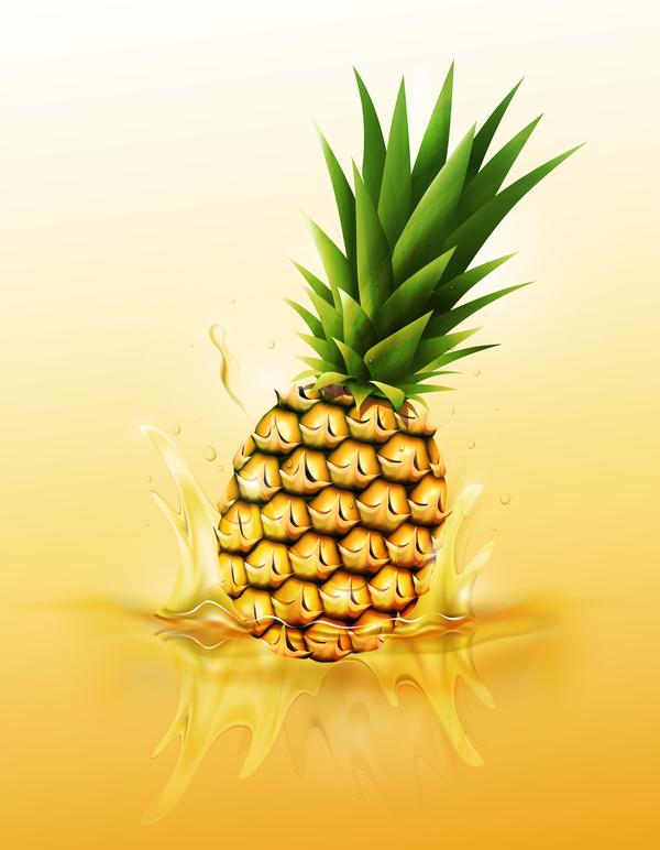 pinapple juice splash vector