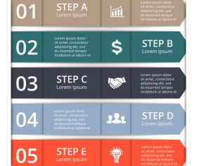 Banner option graphs Infographic template vector 03