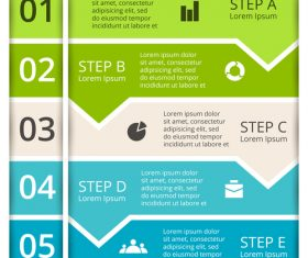 Banner option graphs Infographic template vector 04