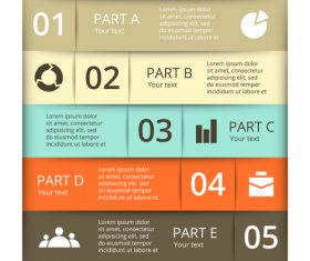 Banner option graphs Infographic template vector 07