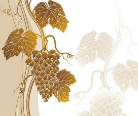 Beige grapes background vector