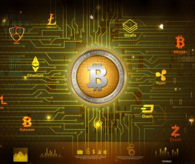 Bitcoin business infographic vector template 03