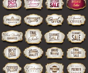 Blank golden frames and labels vector collection