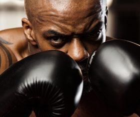 Boxer training Stock Photo 03