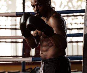 Boxer training Stock Photo 05