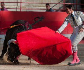 Brave Matador Stock Photo 06