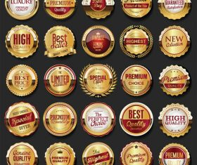 Collection of golden retro vintage badges vector 01