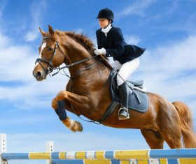 Equestrian Disorder competition Stock Photo