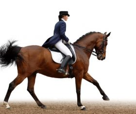 Equestrian performer Stock Photo 01