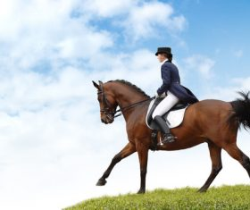 Equestrian performer Stock Photo 02