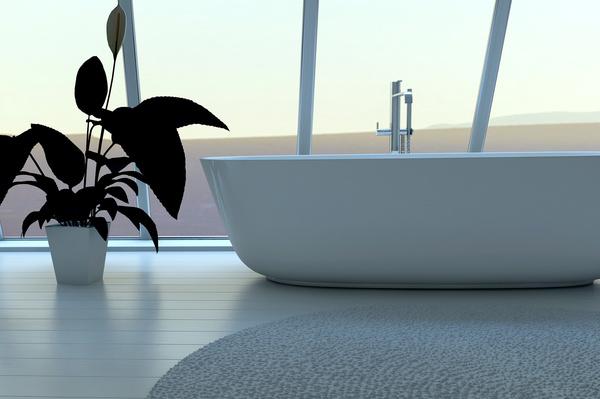 Exclusive Luxury Bathroom Interior Stock Photo 08