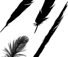 Feather silhouette vector set  01
