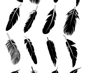 Feather silhouette vector set  02