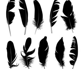 Feather silhouette vector set  04