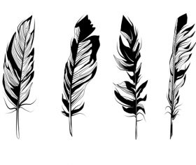 Feather silhouette vector set  05