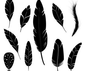 Feather silhouette vector set  07