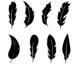 Feather silhouette vector set  08