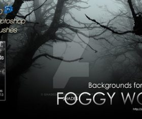 Foggy Woods Photoshop Brushes