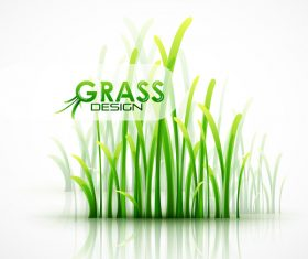 Fresh green grass background design vector 01