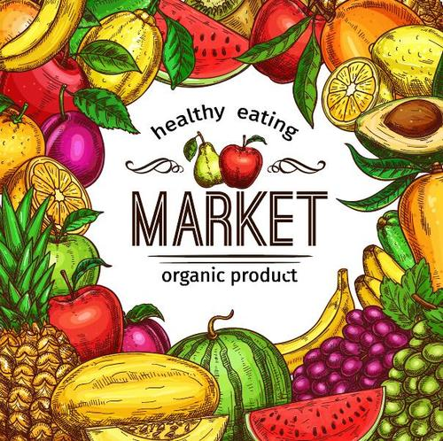 Fruits market background vector