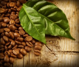 Grains of coffee with leaves Stock Photo  (3)