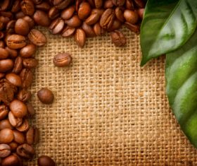 Grains of coffee with leaves Stock Photo  (5)