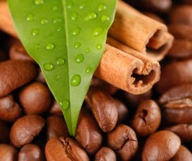 Grains of coffee with leaves Stock Photo  (9)