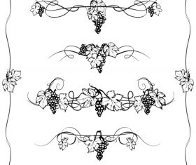 Grape decor with border vector
