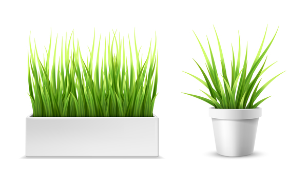 Green grass with flower pot vector