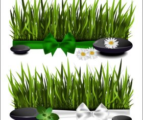 Green grass with spa vector