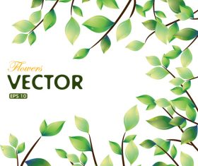 Green leaves spring vector background