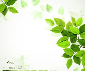Green leaves with blurred background vector 01