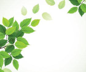 Green leaves with blurred background vector 02