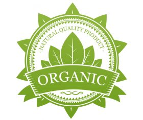 Green organic label design vector