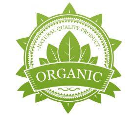 Green organic label design vector