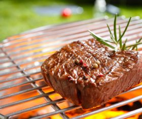 Grilled meat Stock Photo 02