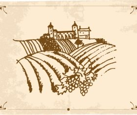 Hand drawn vineyard vector 02