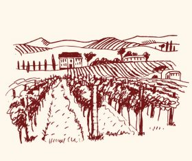 Hand drawn vineyard vector 03