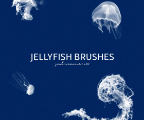 Jellyfish Photoshop Brushes