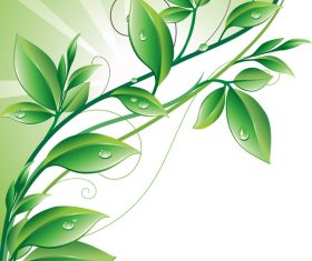 Leaves with water drip vector