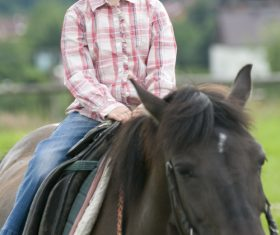 Little girl riding a horse Stock Photo