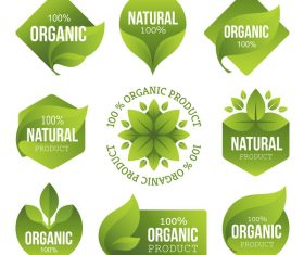 Natural with organic labels design vector